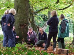 talk to write forest school inset training session at Millfield prep