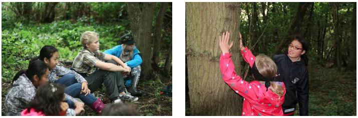 jk nature connection
