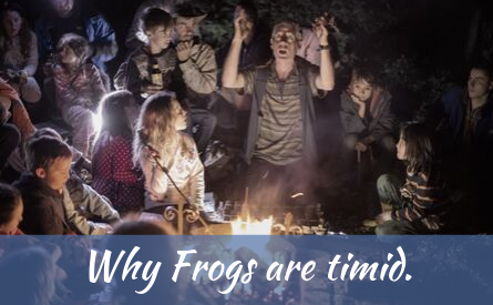 Why frogs are timid