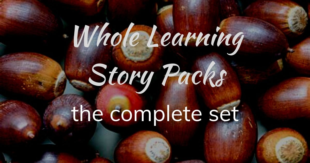 Whole learning story packs-5